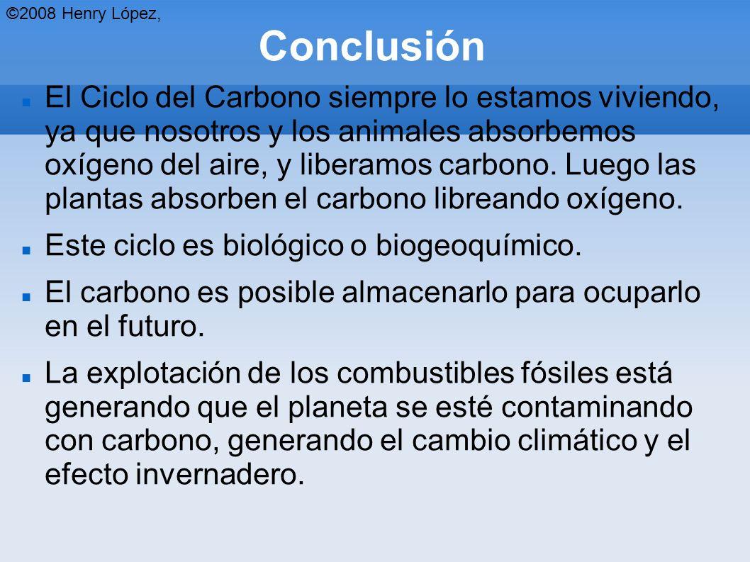 ©2008 Henry López, Conclusión.