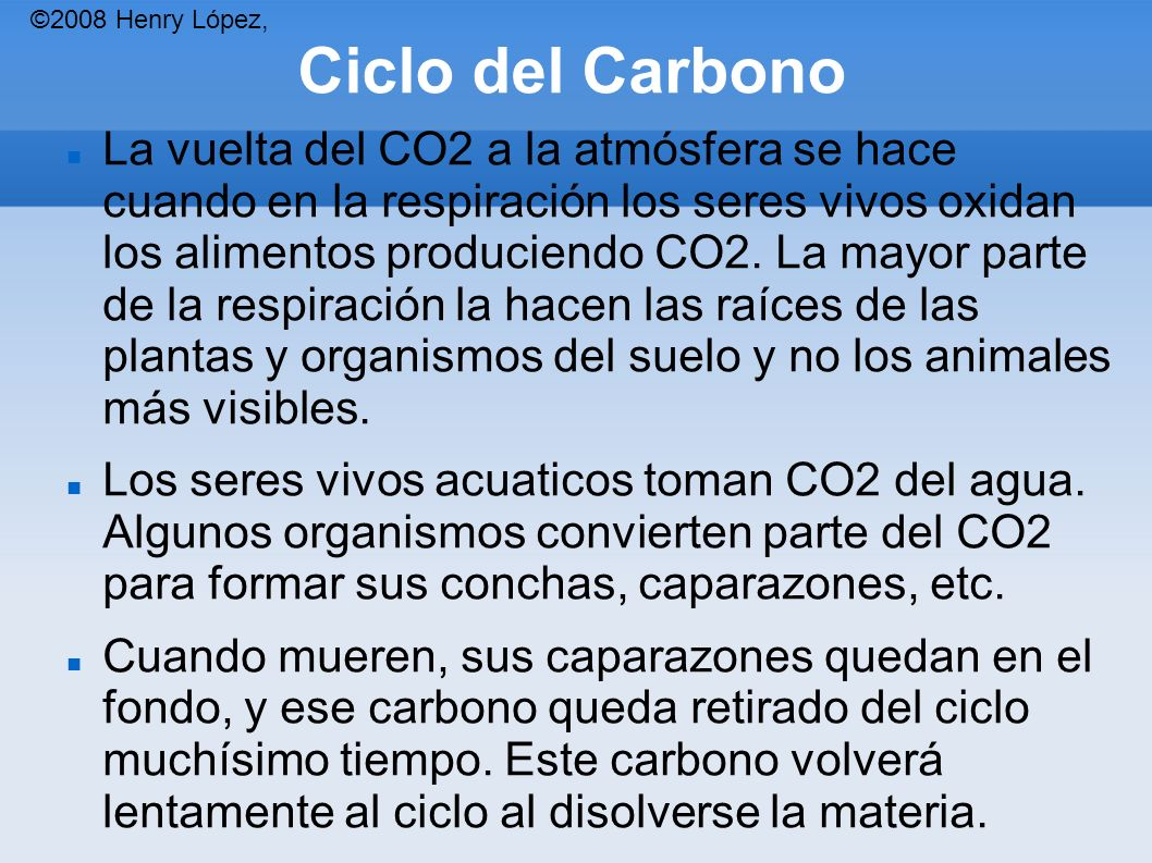 ©2008 Henry López, Ciclo del Carbono.