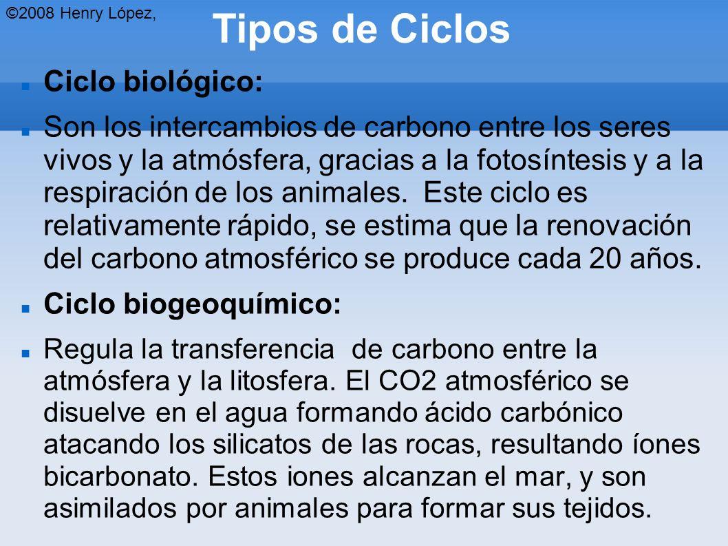 Tipos de Ciclos Ciclo biológico: