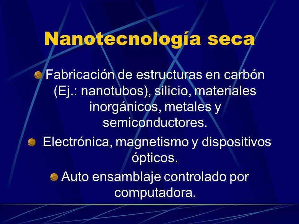 Nanotecnología seca Fabricación de estructuras en carbón (Ej.: nanotubos), silicio, materiales inorgánicos, metales y semiconductores.