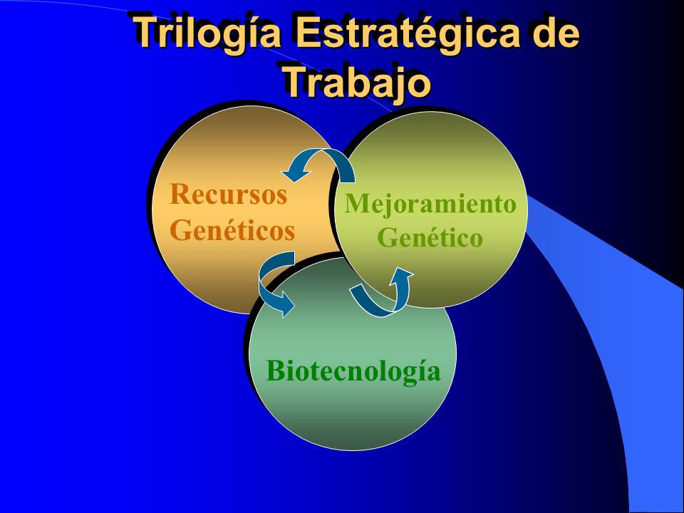 Trilogía Estratégica de Trabajo