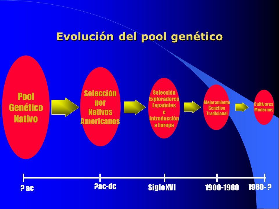 Evolución del pool genético