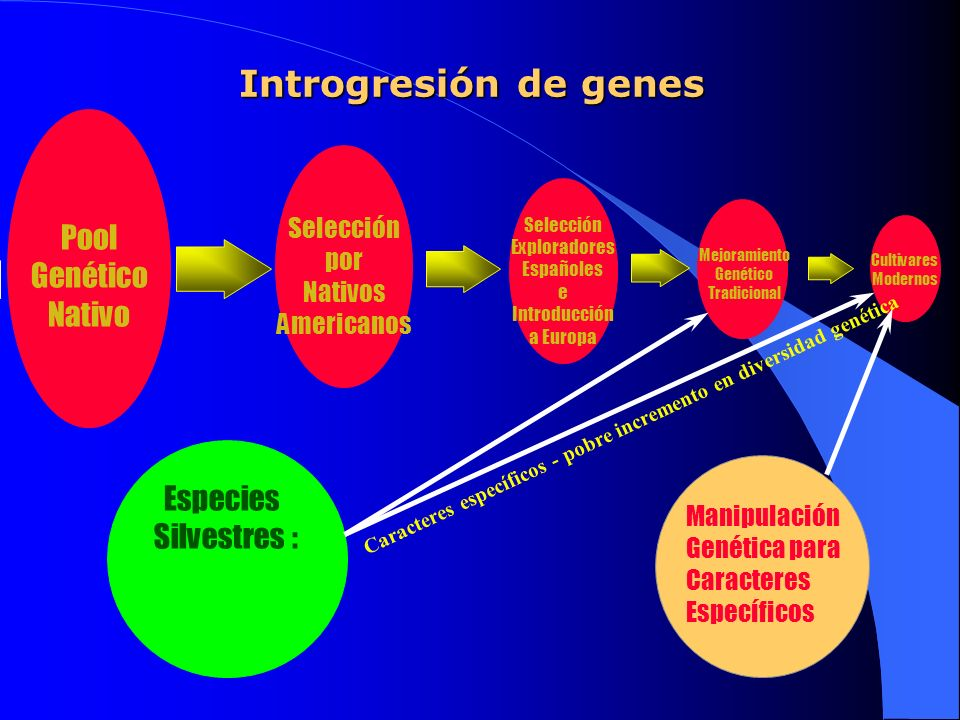 Introgresión de genes Pool Genético Nativo Especies Silvestres :