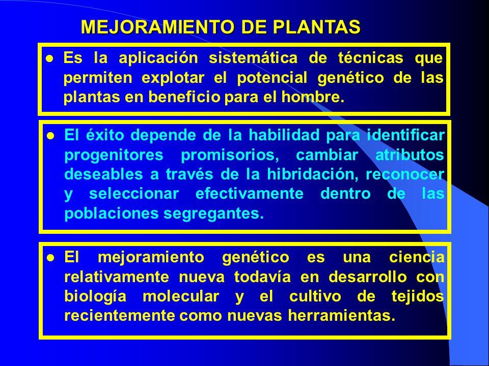 MEJORAMIENTO DE PLANTAS