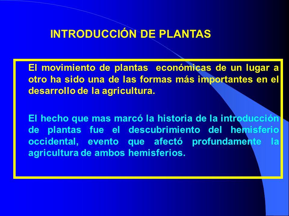 INTRODUCCIÓN DE PLANTAS