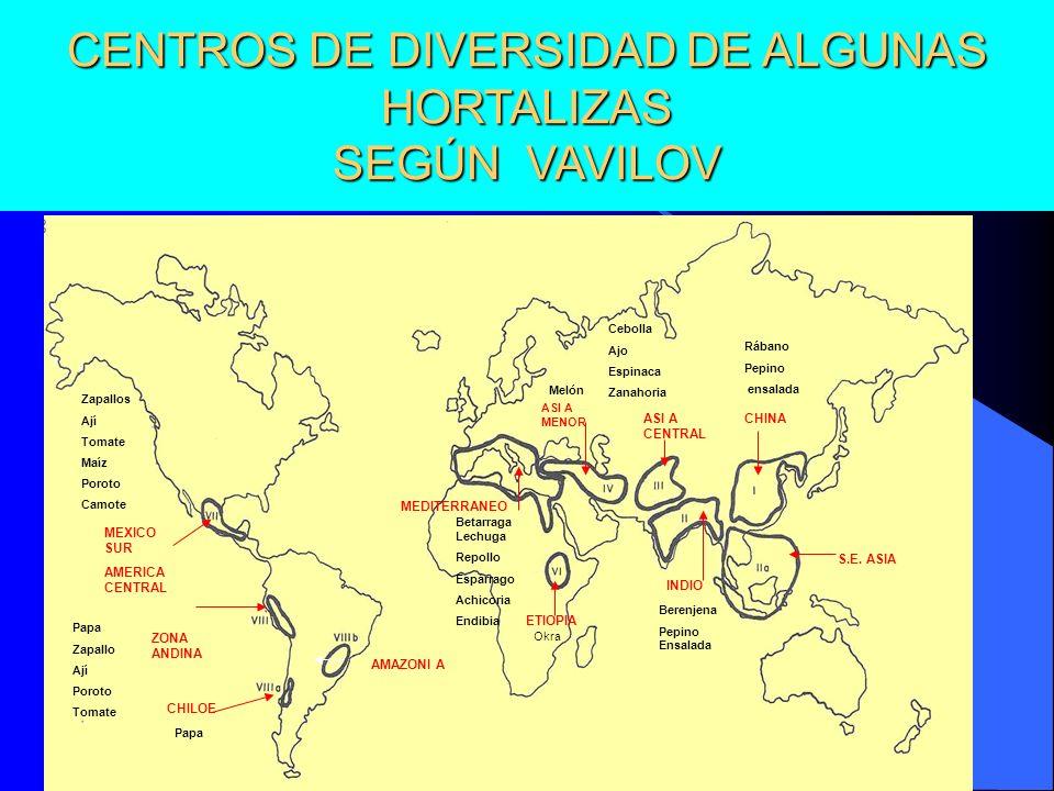 CENTROS DE DIVERSIDAD DE ALGUNAS HORTALIZAS SEGÚN VAVILOV