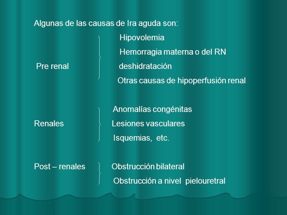 Algunas de las causas de Ira aguda son: Hipovolemia