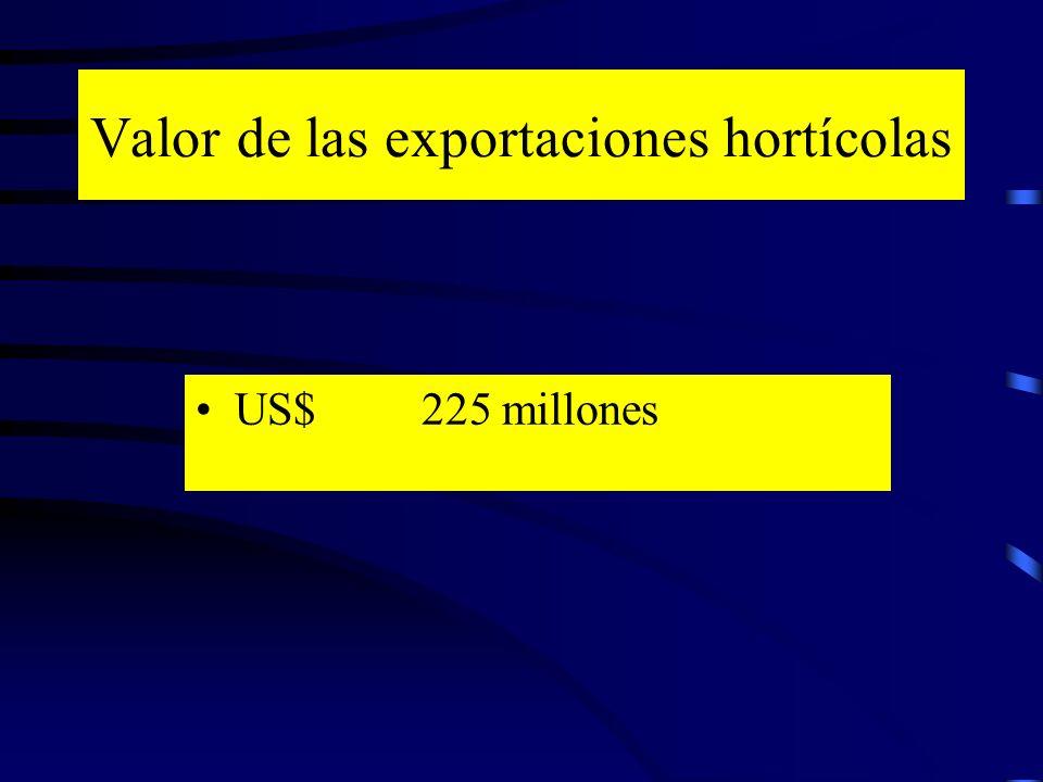 Valor de las exportaciones hortícolas