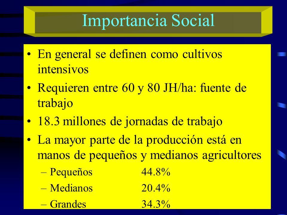 Importancia Social En general se definen como cultivos intensivos