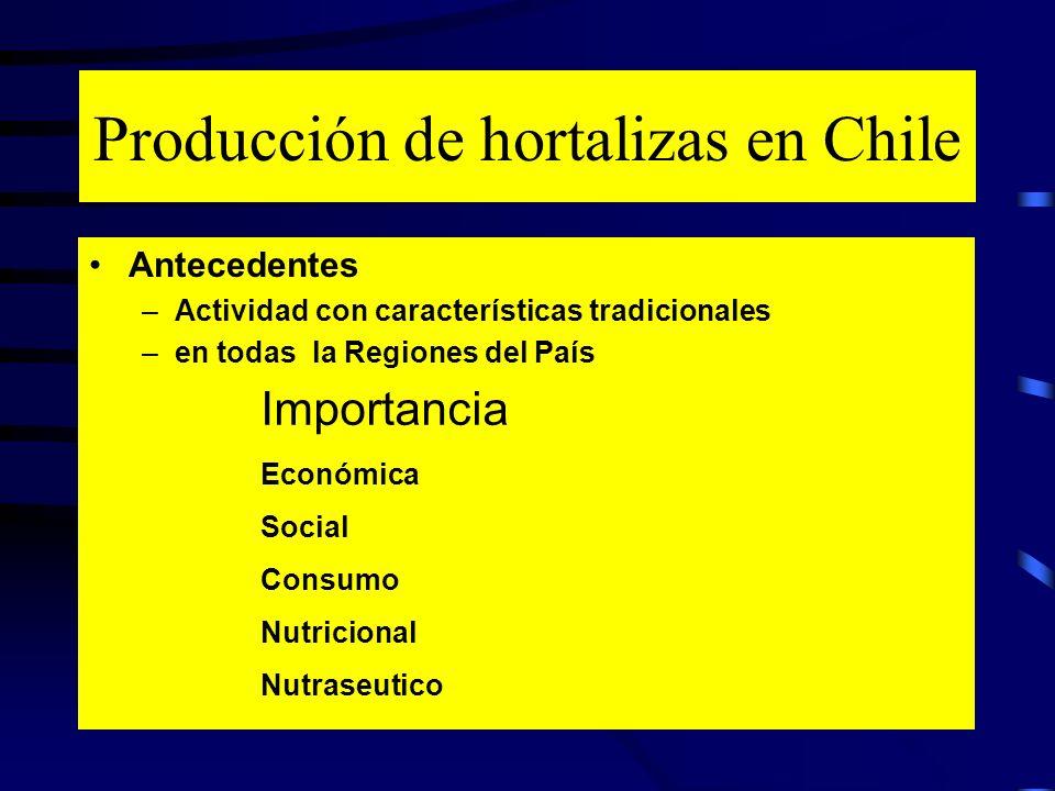 Producción de hortalizas en Chile