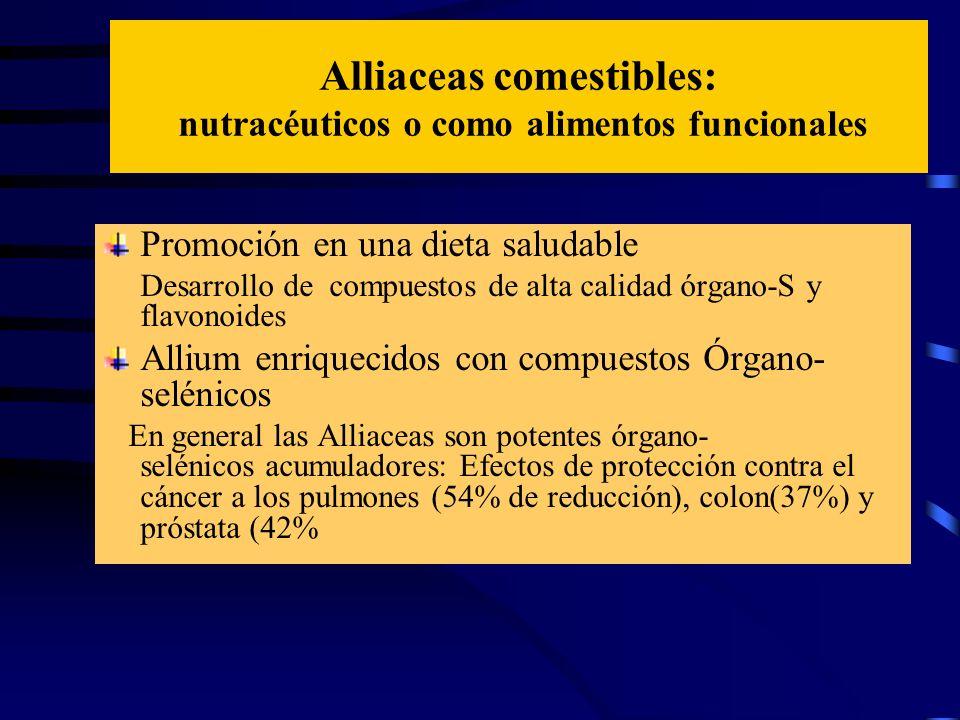 Alliaceas comestibles: nutracéuticos o como alimentos funcionales