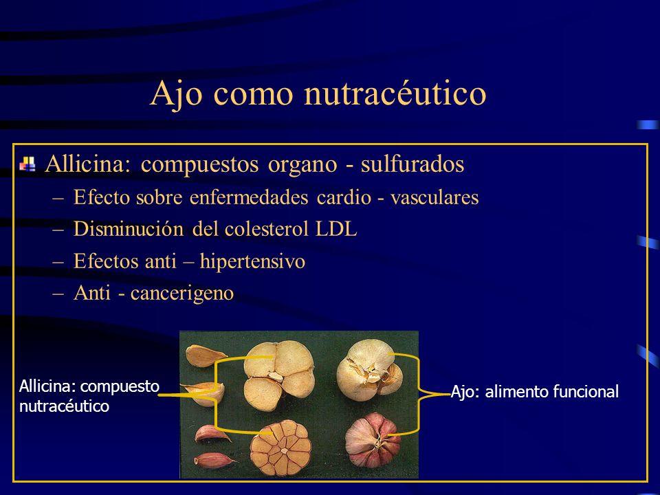 Ajo como nutracéutico Allicina: compuestos organo - sulfurados