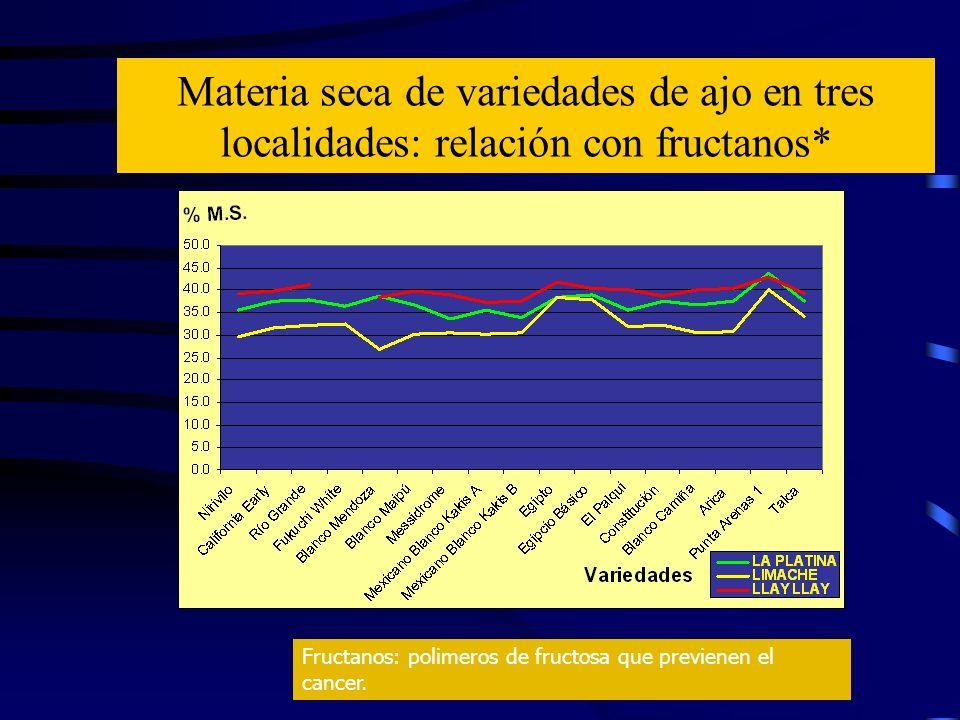 Materia seca de variedades de ajo en tres localidades: relación con fructanos*