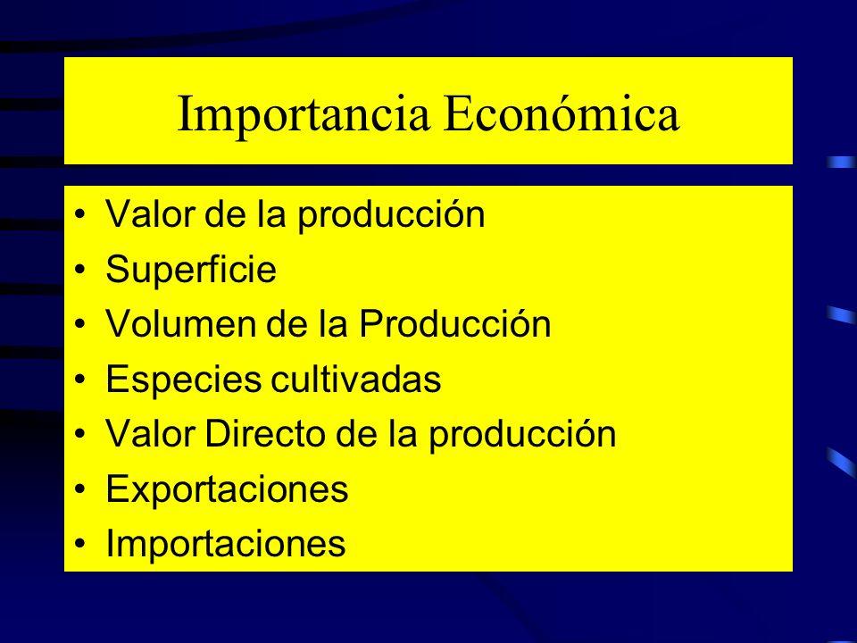 Importancia Económica