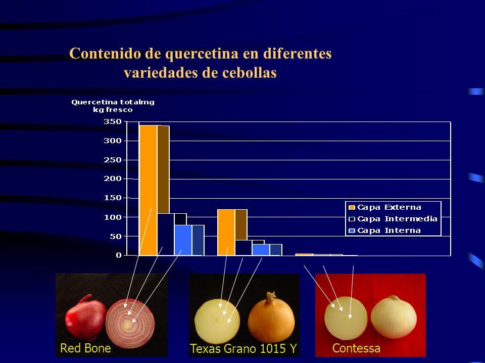 Contenido de quercetina en diferentes variedades de cebollas