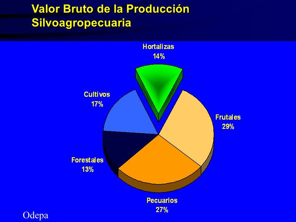 Valor Bruto de la Producción Silvoagropecuaria