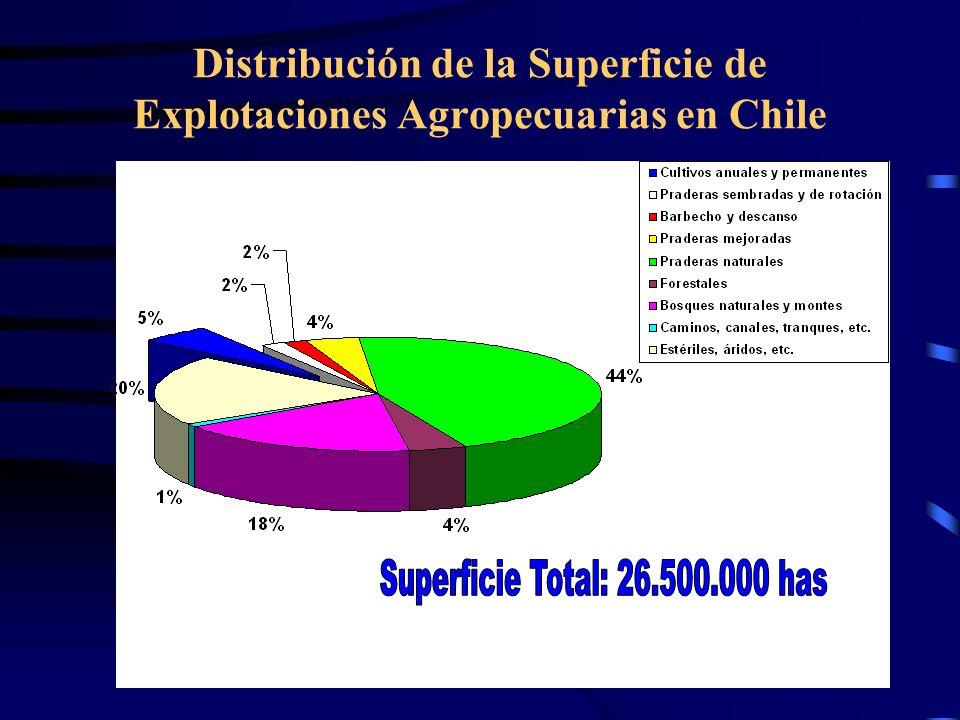 Distribución de la Superficie de Explotaciones Agropecuarias en Chile