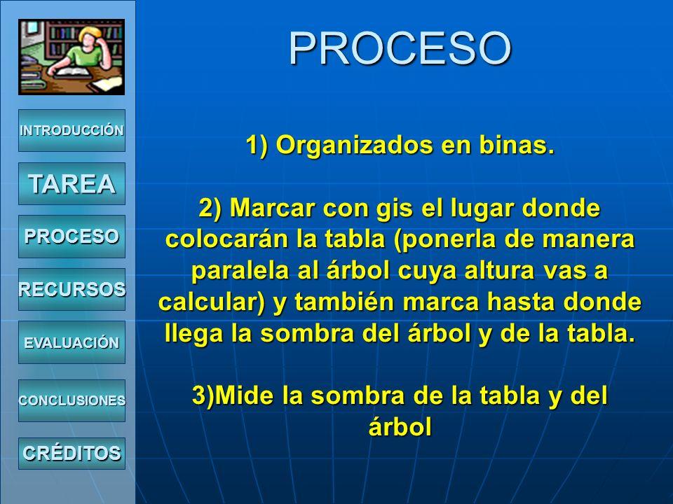 PROCESO 1) Organizados en binas