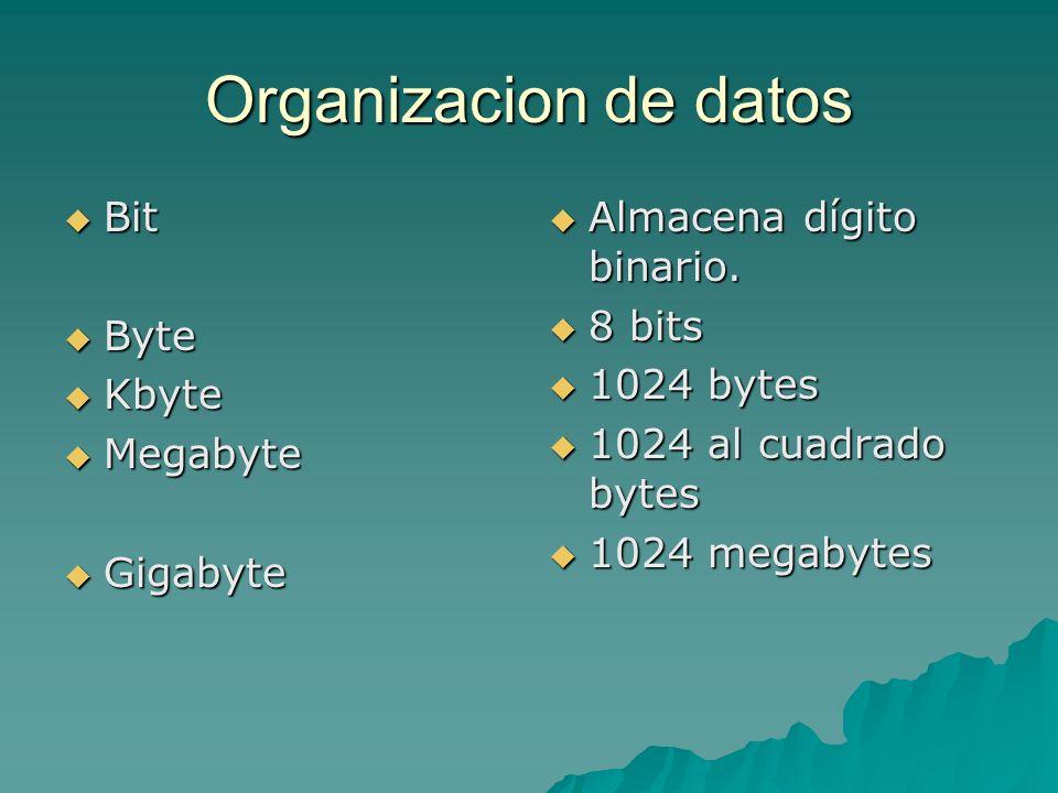 Organizacion de datos Bit Byte Kbyte Megabyte Gigabyte