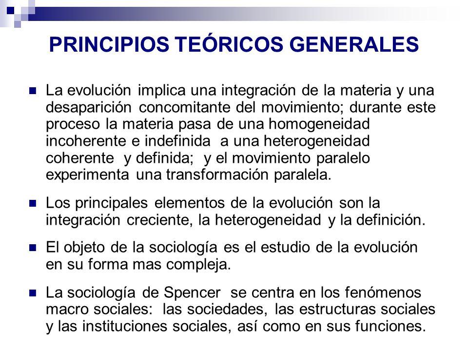 PRINCIPIOS TEÓRICOS GENERALES