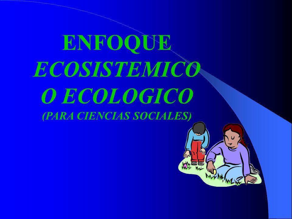 ECOSISTEMICO O ECOLOGICO (PARA CIENCIAS SOCIALES)