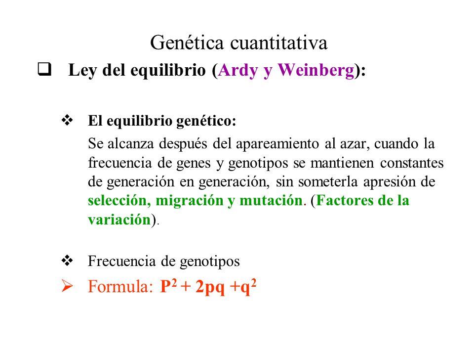 Vistoso Hoja De Trabajo Resistente Weinberg Patrón - hojas de ...