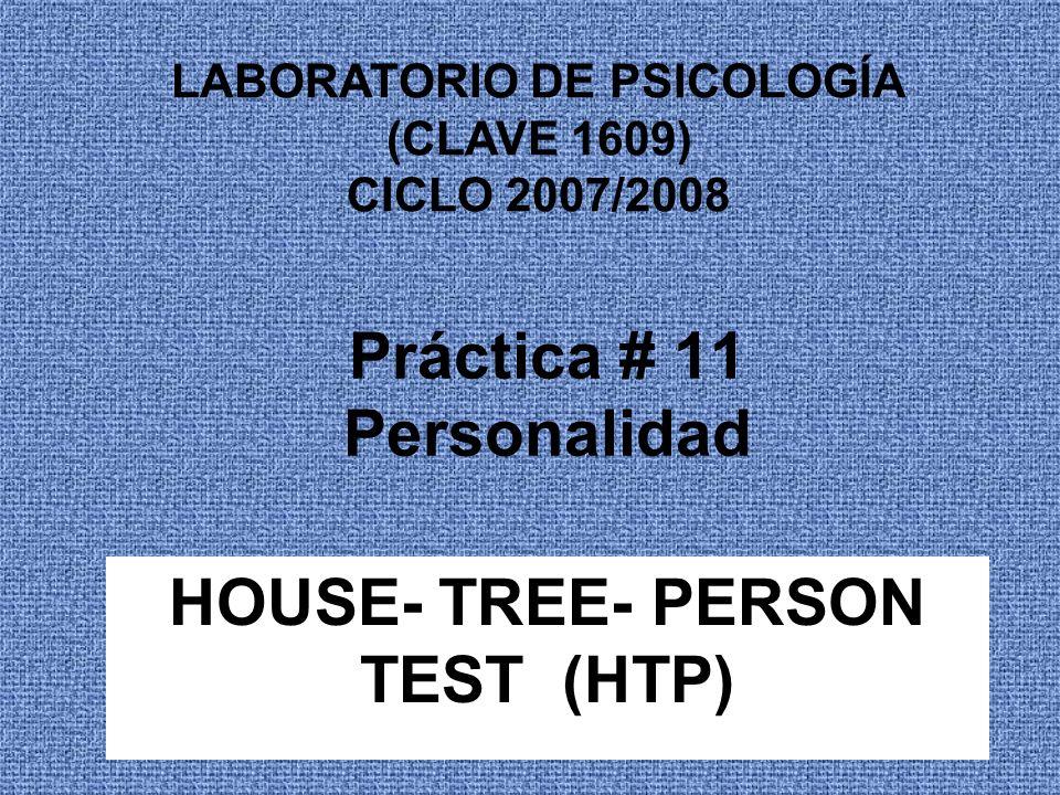 Práctica # 11 Personalidad