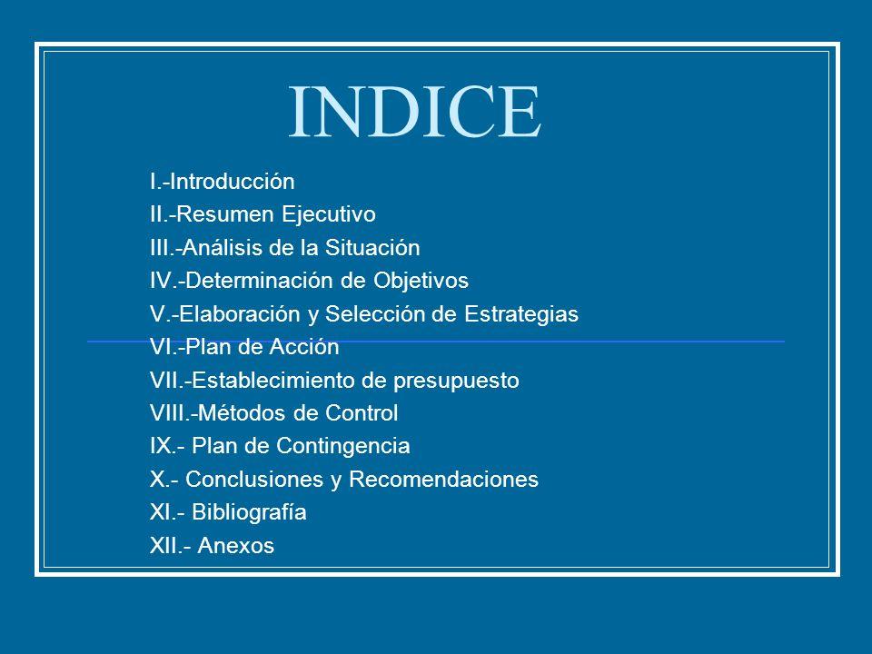 INDICE I.-Introducción II.-Resumen Ejecutivo
