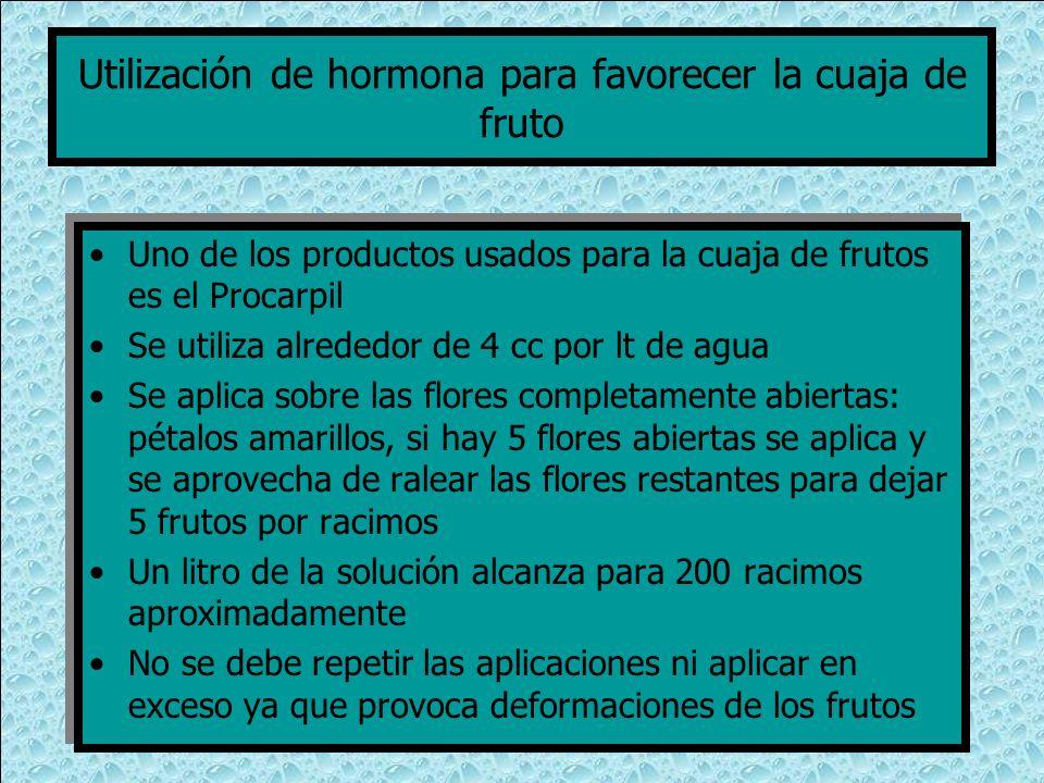 Utilización de hormona para favorecer la cuaja de fruto