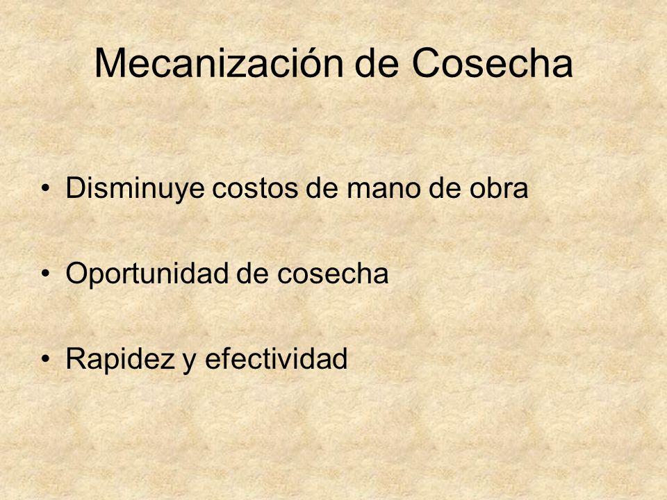 Mecanización de Cosecha