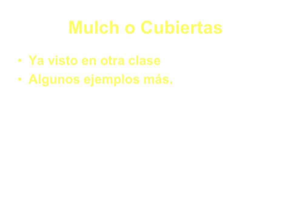 Mulch o Cubiertas Ya visto en otra clase Algunos ejemplos más.