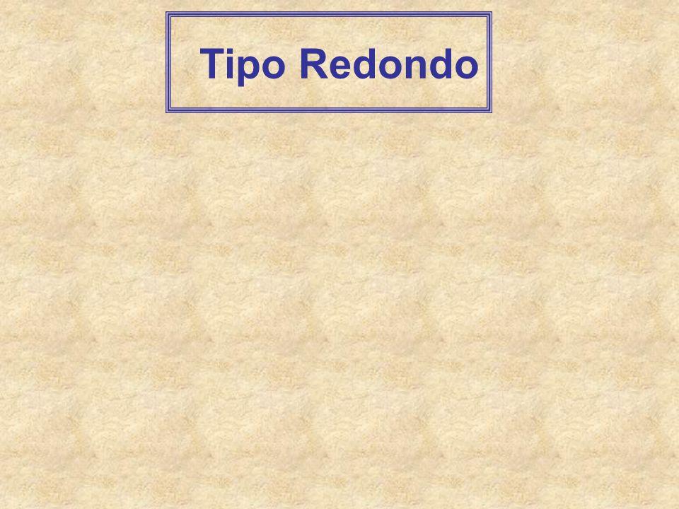 Tipo Redondo