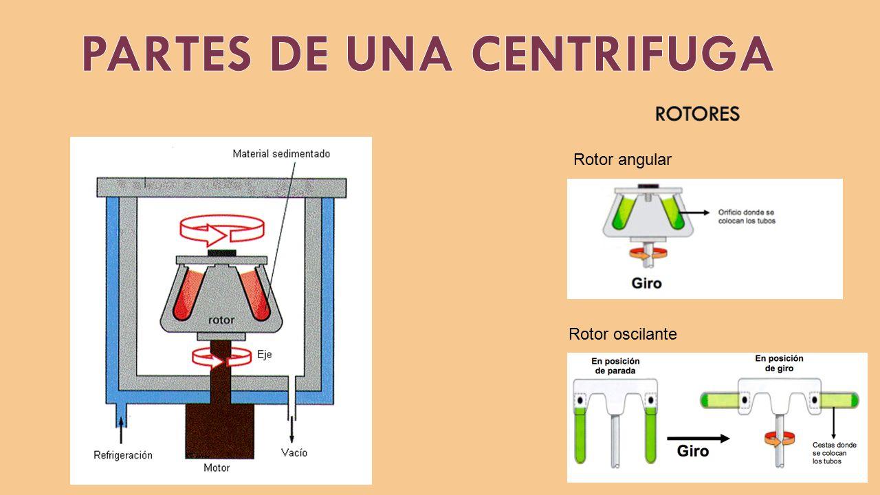 Universidad nacional santiago ant nez de mayolo ppt for Partes de una griferia de ducha