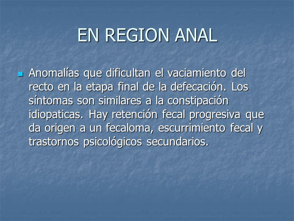 EN REGION ANAL