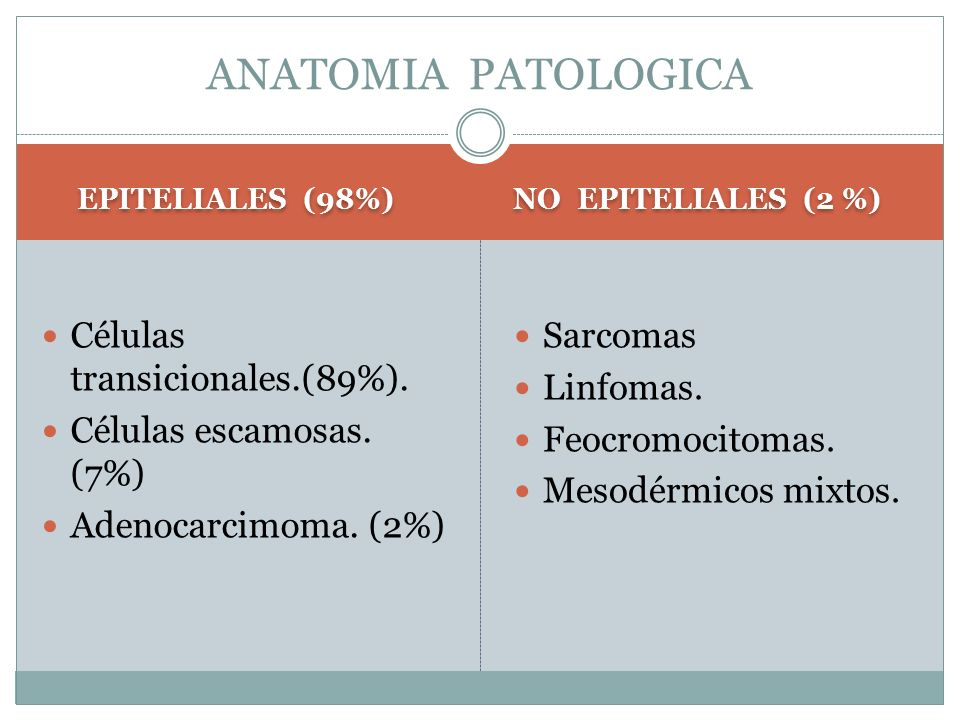 ANATOMIA PATOLOGICA Células transicionales.(89%).