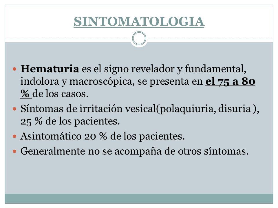 SINTOMATOLOGIA Hematuria es el signo revelador y fundamental, indolora y macroscópica, se presenta en el 75 a 80 % de los casos.