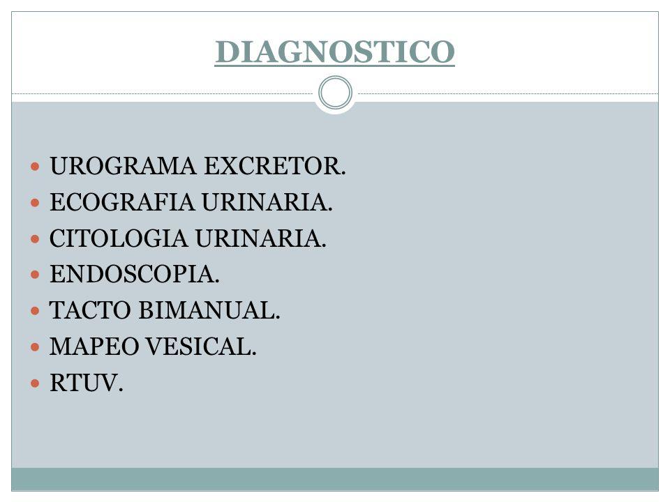 DIAGNOSTICO UROGRAMA EXCRETOR. ECOGRAFIA URINARIA. CITOLOGIA URINARIA.
