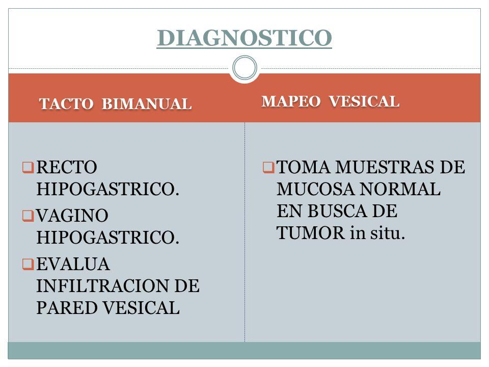 DIAGNOSTICO RECTO HIPOGASTRICO. VAGINO HIPOGASTRICO.