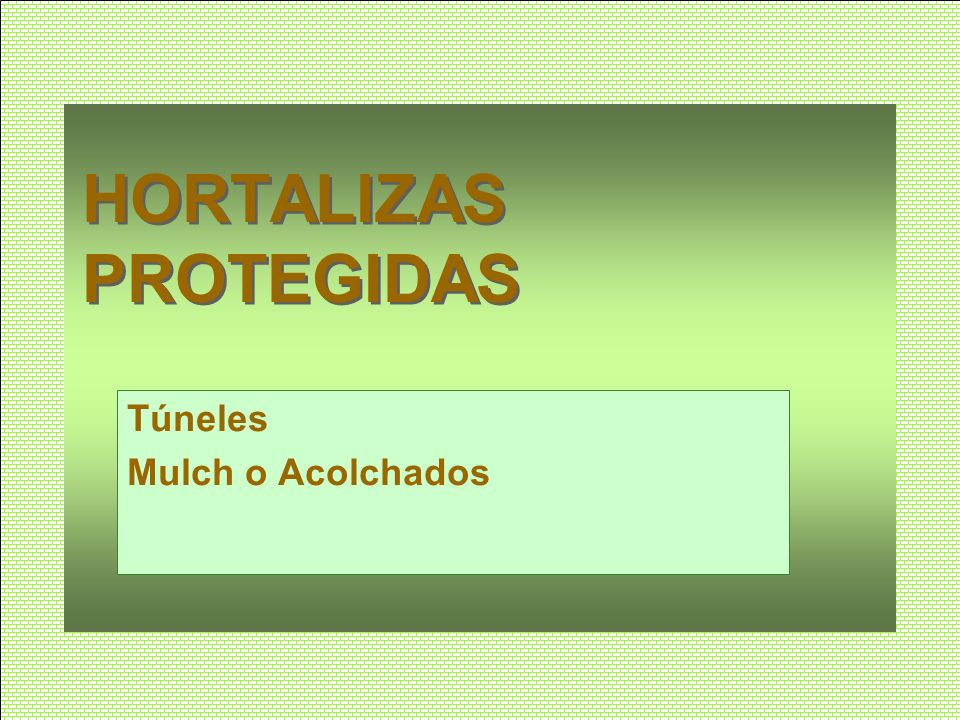 HORTALIZAS PROTEGIDAS