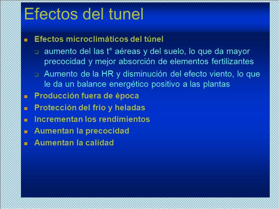Efectos del tunel Efectos microclimáticos del túnel.