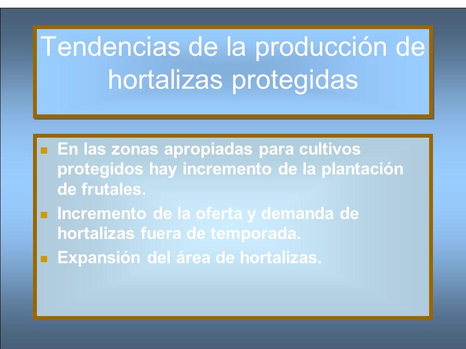Tendencias de la producción de hortalizas protegidas