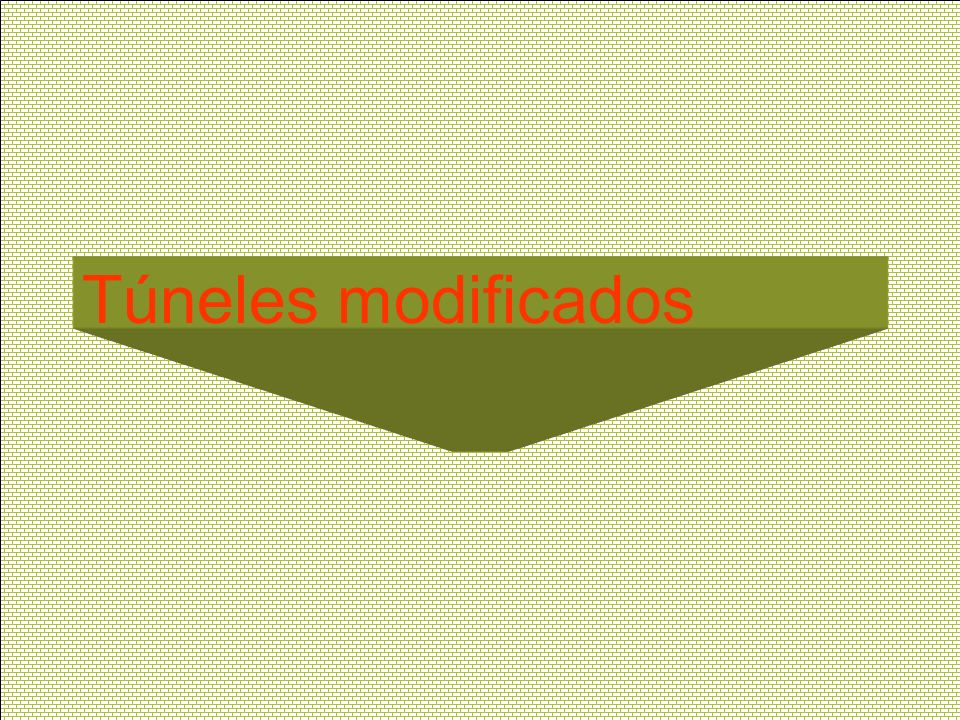 Túneles modificados