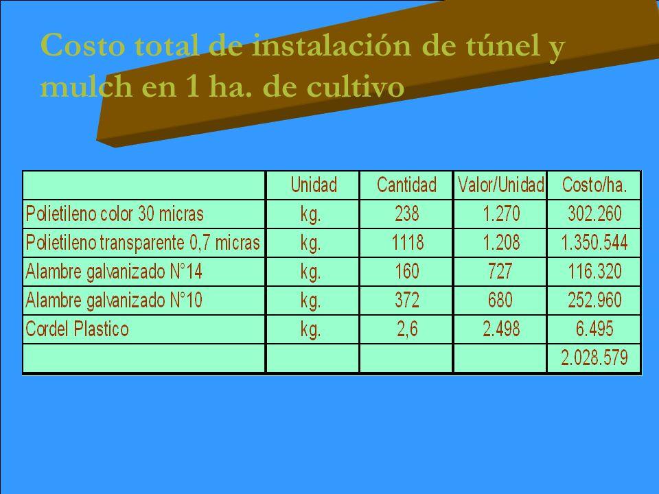 Costo total de instalación de túnel y mulch en 1 ha. de cultivo