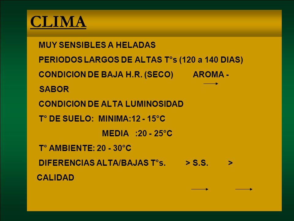 CLIMA MUY SENSIBLES A HELADAS