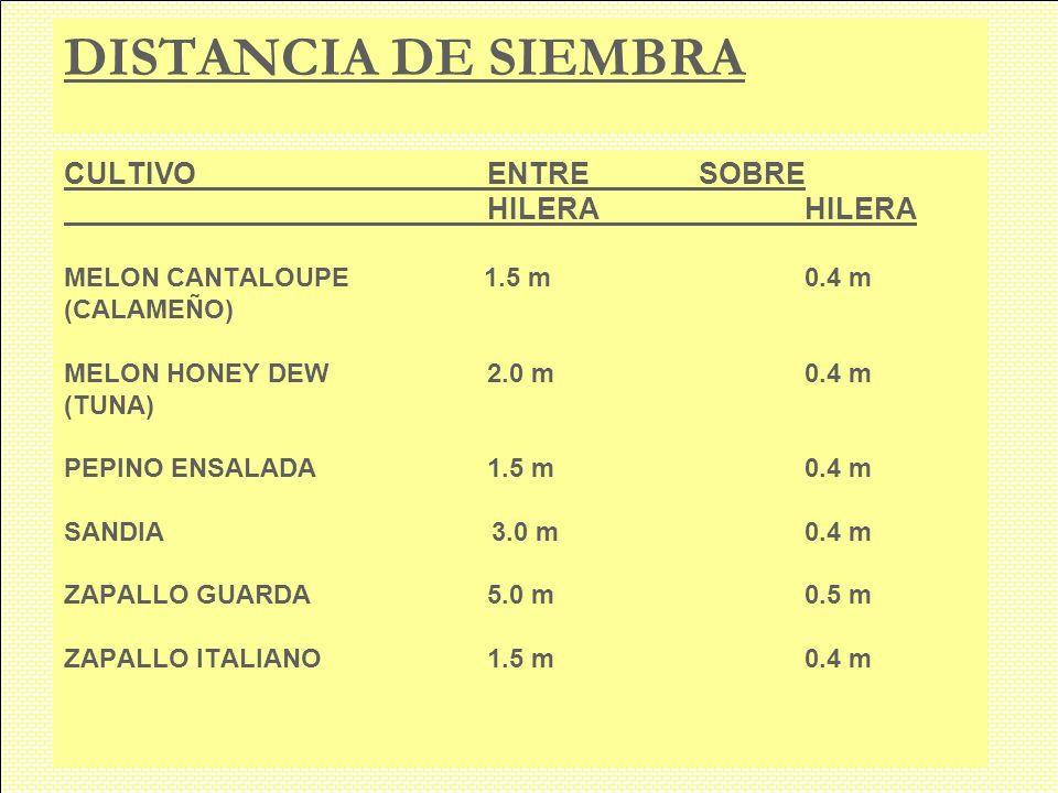 DISTANCIA DE SIEMBRA CULTIVO ENTRE SOBRE HILERA HILERA