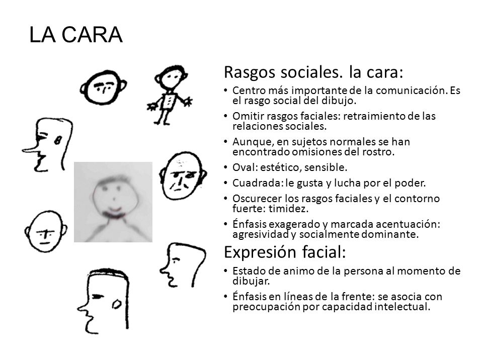 LA CARA Rasgos sociales. la cara: Expresión facial: