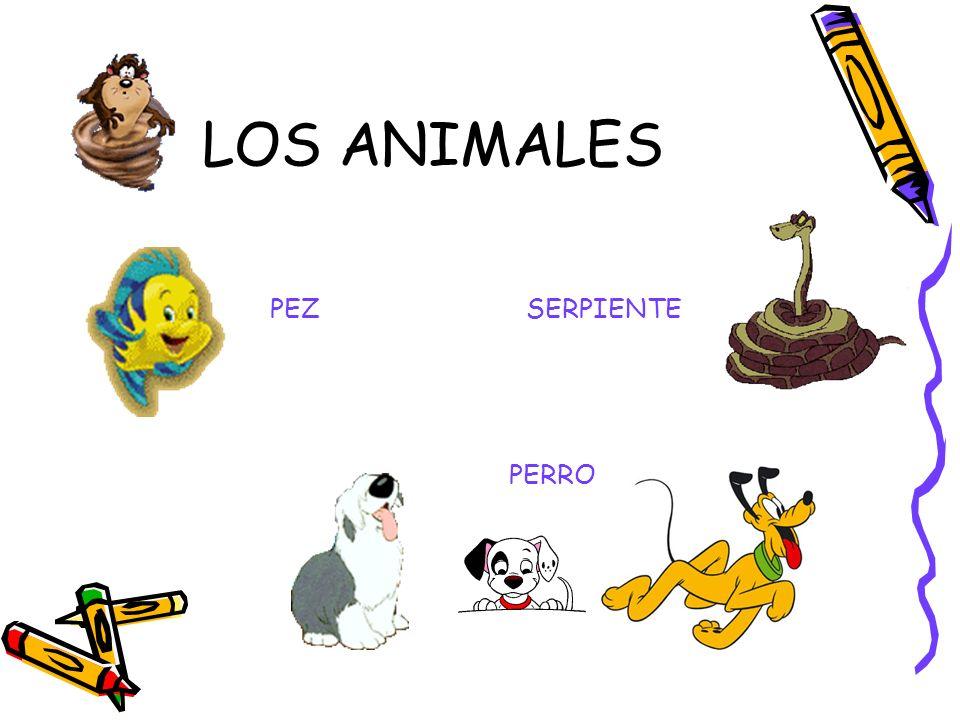 LOS ANIMALES SERPIENTE PEZ PERRO
