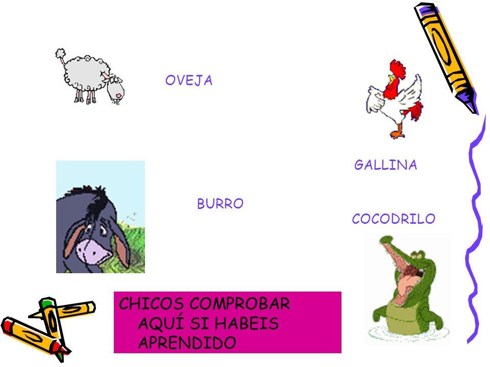 CHICOS COMPROBAR AQUÍ SI HABEIS APRENDIDO