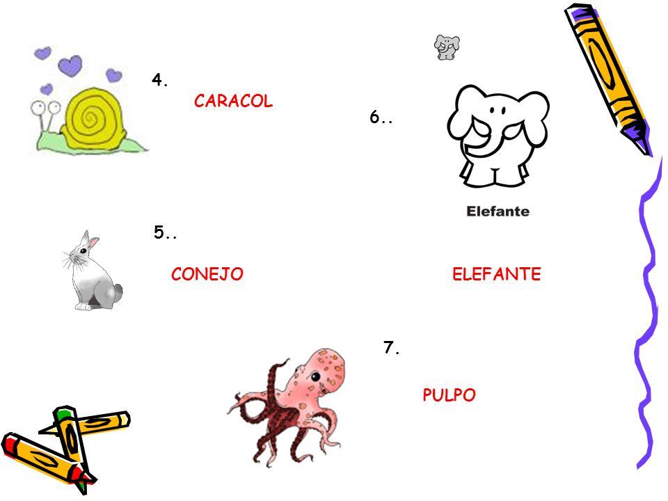 4. CARACOL 6.. 5.. CONEJO ELEFANTE 7. PULPO