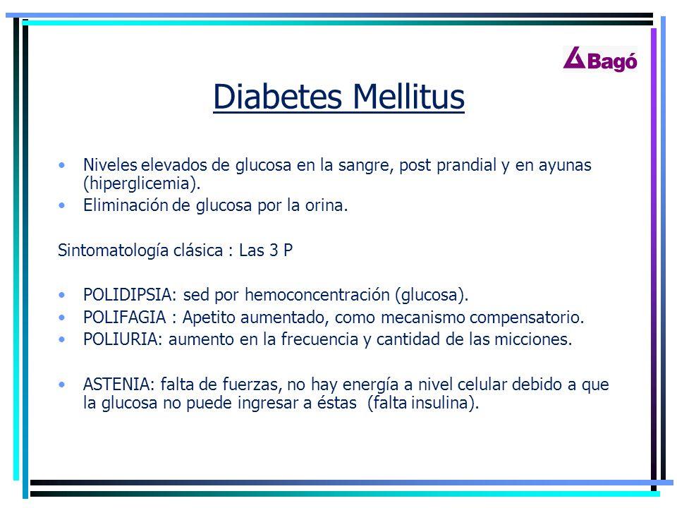 DIABETES MELLITUS. - ppt descargar